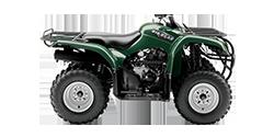 Photo of a green ATV