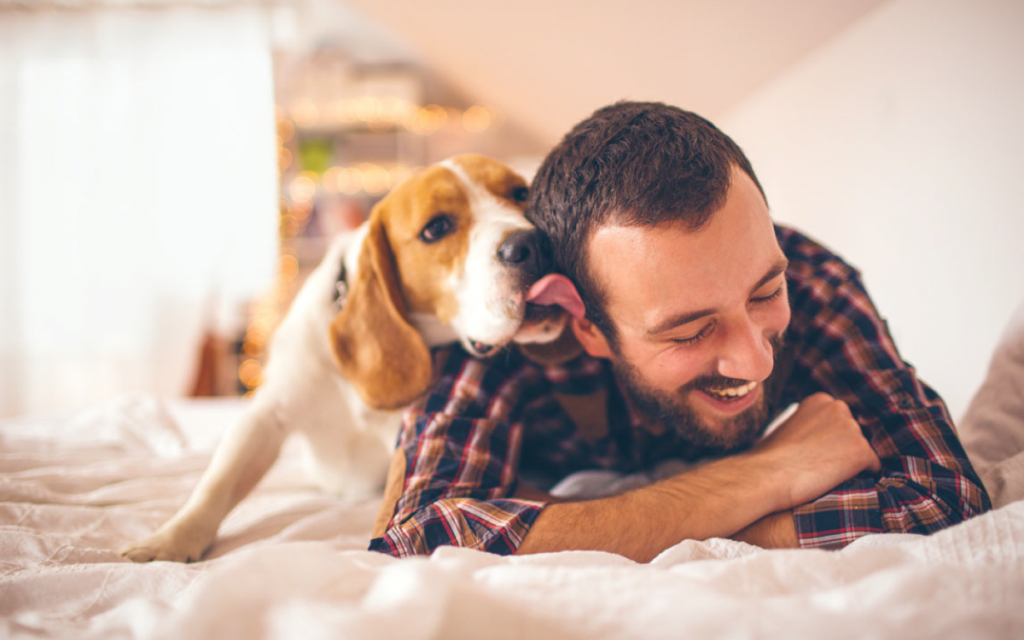 Dog licking a smiling man's face