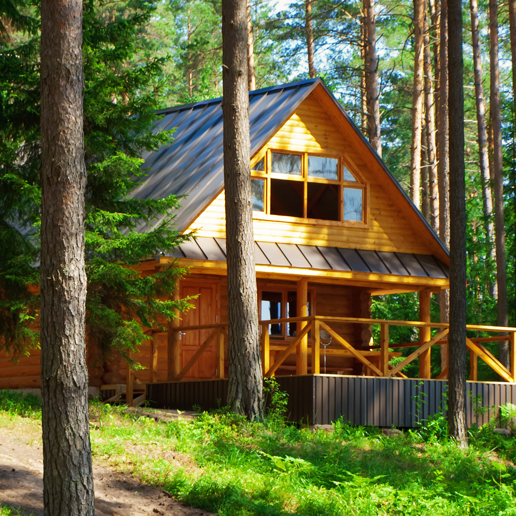 Photo of a cabin surrounded by pine trees